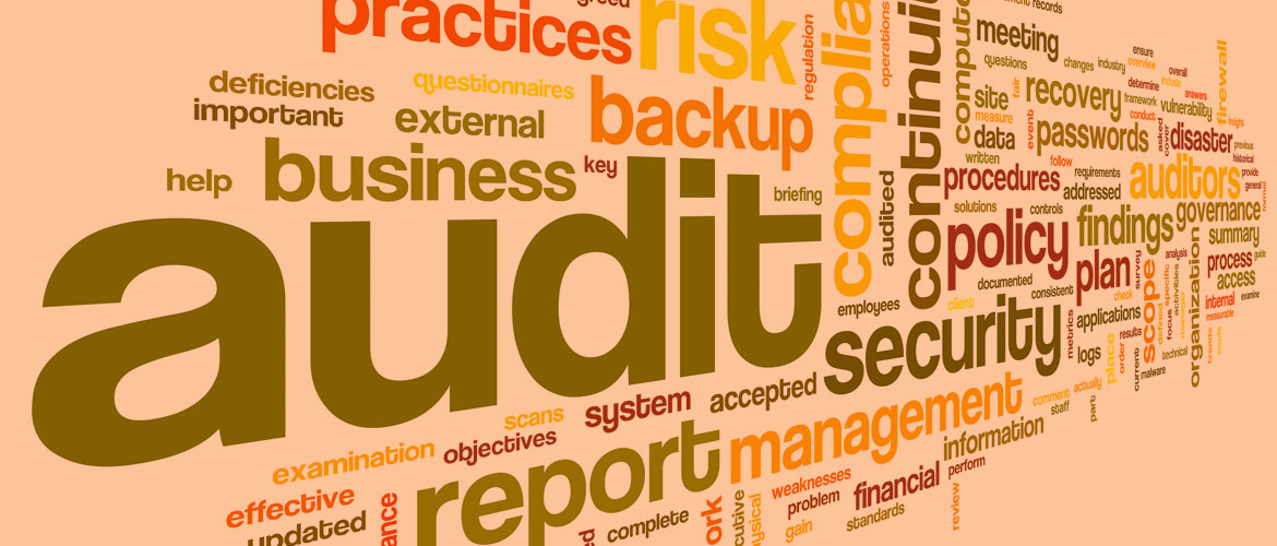 QX Supports BSI Audit